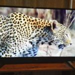 maxzenのテレビを買った!評判等から徹底的にレビューしてみたよ【J40SK03】